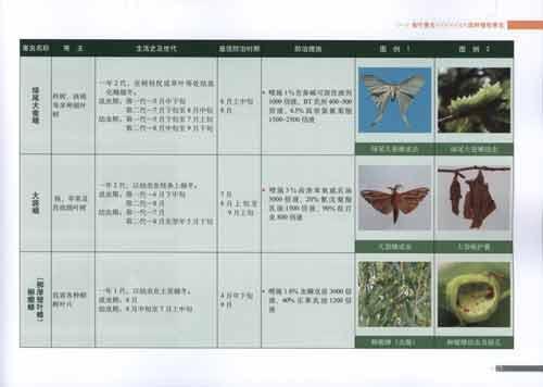 北方园林植物病虫害防治手册