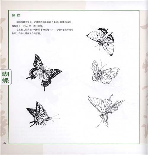 百蟲畫譜/中國畫畫譜叢書