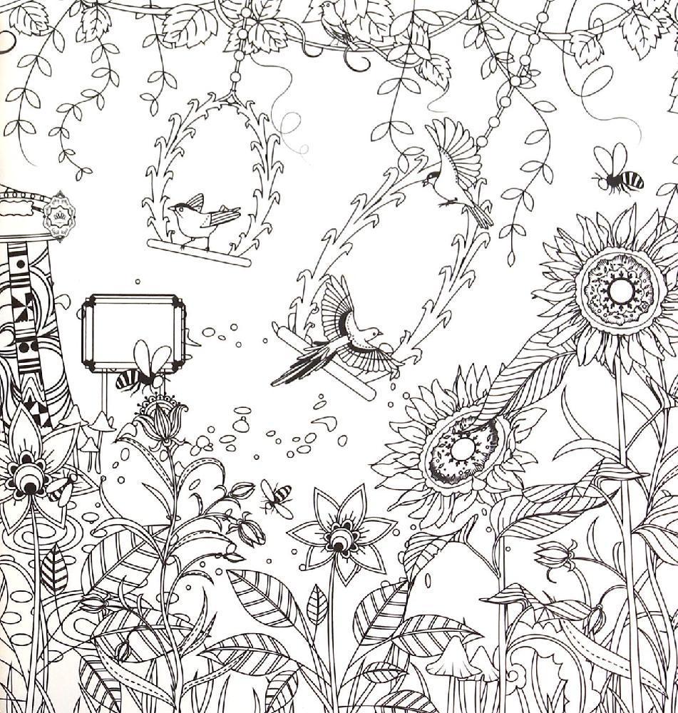 花园简笔画风景图片
