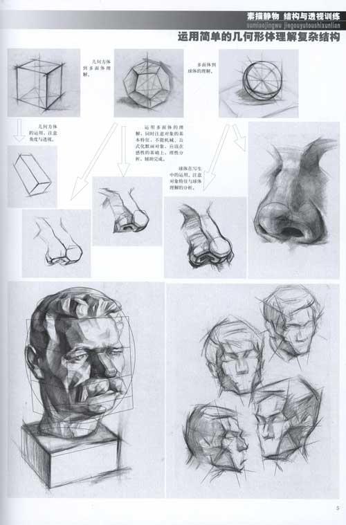 素描静物结构与透视训练