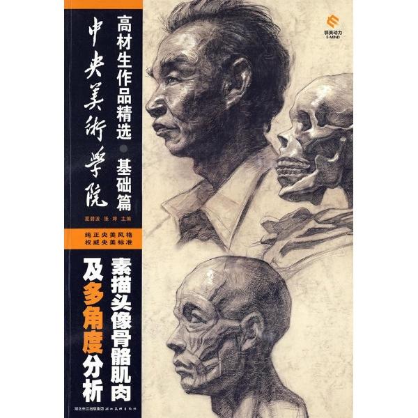 素描头像骨骼肌肉及多角度分析/基础篇-中央美术学院高材生作品精选