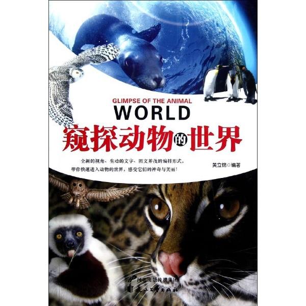 窥探动物的世界
