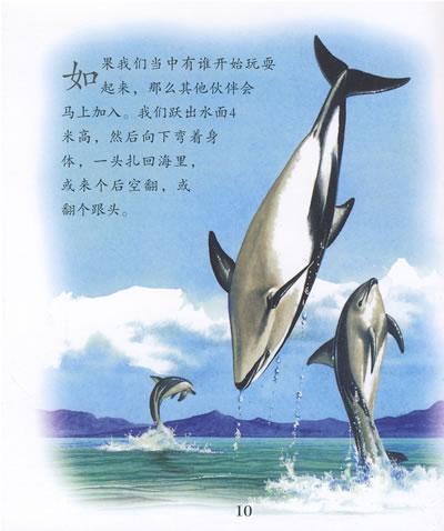 海豚画画图片大全大师