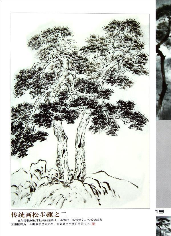 中国画松树画法和运用-蔡育贤-技法教程-文轩网