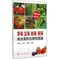 草莓 蓝莓 树莓 黑莓病虫害防治原色图鉴