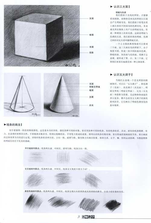 郑培华石膏几何体组合临摹范本