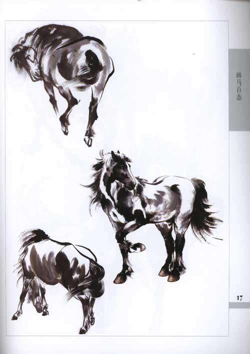 单只马画马的步骤素描-单只马图片