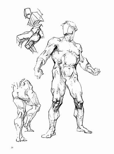 肌肉简笔画步骤