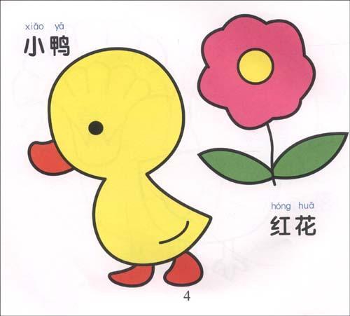 宝宝爱画画-花鸟百科