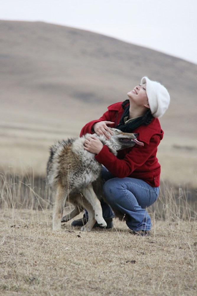 重返狼群在线阅读_重返狼群2 mobi-重返狼群 mobi/重返狼群2在线阅读/重返狼群2格林 ...