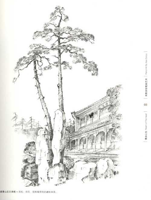 唯美铅笔手绘树