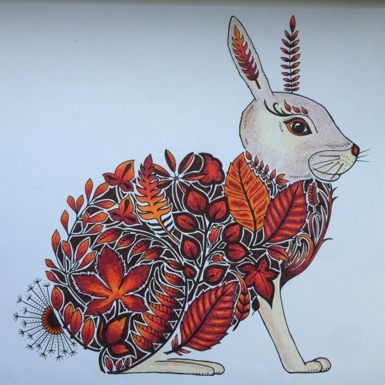 绘画 彩铅/铅笔画 魔法森林 填色书 减压 涂色书