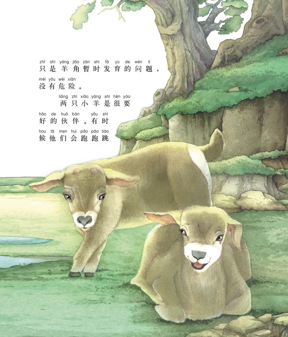小羊彩色卡通图片
