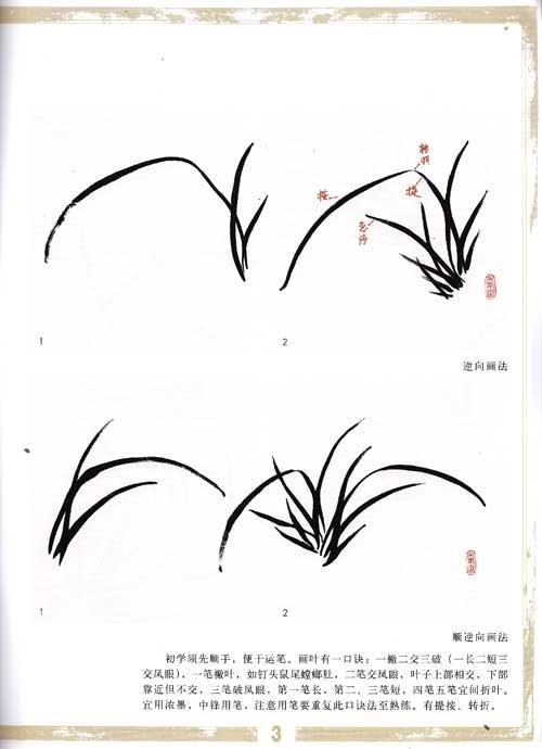 学国画.兰花-陈政-技法教程-文轩网