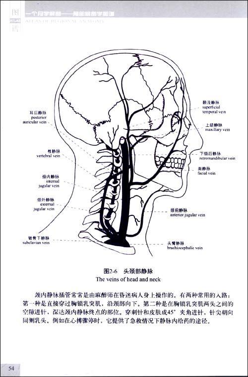 一个月学解剖——局部解剖学图谱