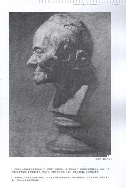 素描石膏头像-照片写生范本-邰铭