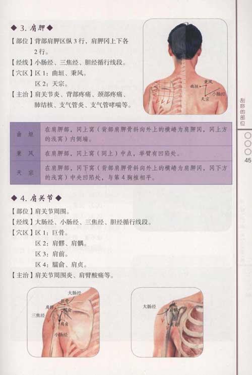 家庭养生秘笈·对症刮痧分步图解-刘家瑞-中医养生