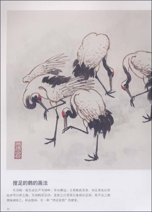 目录 前言 丹顶鹤的特征 丹顶鹤的结构和各部位名称 鹤