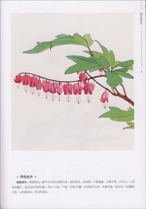 名花手绘本/¥0