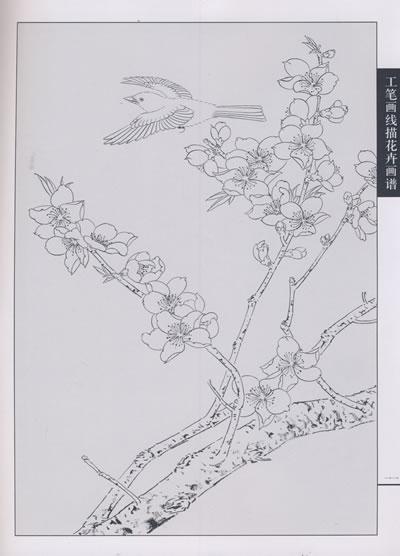 工笔画线描花卉画谱·桃花篇