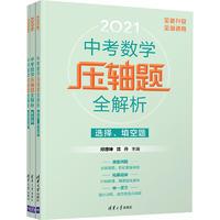 中考数学压轴题全解析 2021(全3册)