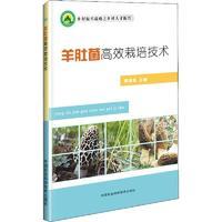 羊肚菌高效栽培技术